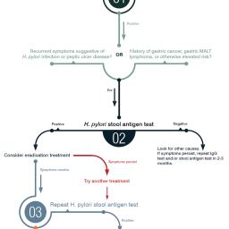 H. pylori Testing and Treatment Algorithm
